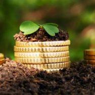 К «бездоговорной аренде» земли применяются положения о безосновательном сохранении имущества