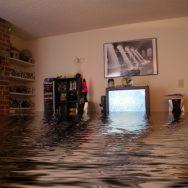 Вас затопили соседи: алгоритм действий и на что обратить внимание
