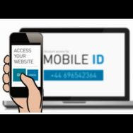 ПАВЕЛ ПЕТРЕНКО: благодаря внедрению MOBILE ID телефон каждого украинца превратится в Центр административных услуг