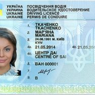 Иностранцам упростят сдачу экзамена на водительские права