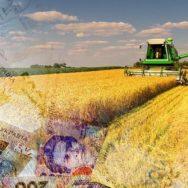 Государственный аграрный реестр запущен в пилотном режиме