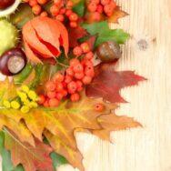 Увага, стартує осінь подарунків та акцій!